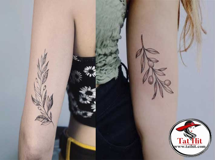 Olive Branch tattoo meaning and symbolism