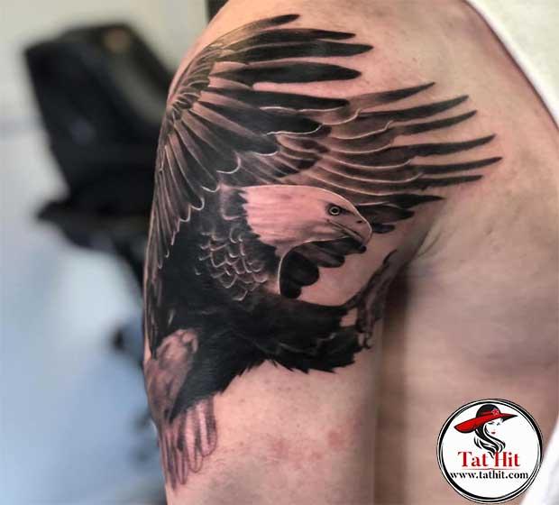 feather eagle tattoo designs