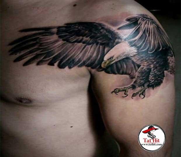 terribal-eagle-tattoos